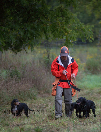 Euclid Sporting Spaniel Club MI FT