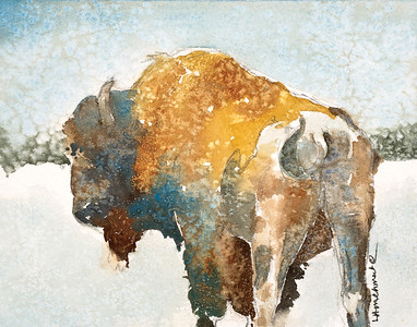Mosca Buffalo