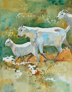 Goats Two