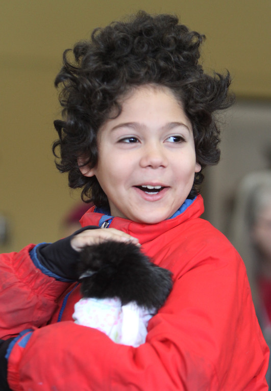 . Farm Visits brings their travelling petting zoo of baby farm animals to Pollard Memorial Library. Radame Taveras, 10, of Lowell, holds a Japanese Silkie chicken. (SUN Julia Malakie)