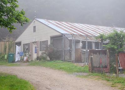 Fitchburg Dog Shelter