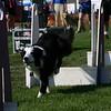 Aug2004Flyball 045.jpg