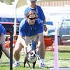 Aug2004Flyball 070.jpg