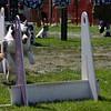 Aug2004Flyball 134.jpg