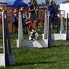 Aug2004Flyball 061.jpg