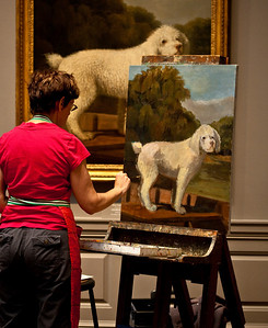 poodle (National Gallery of Art)