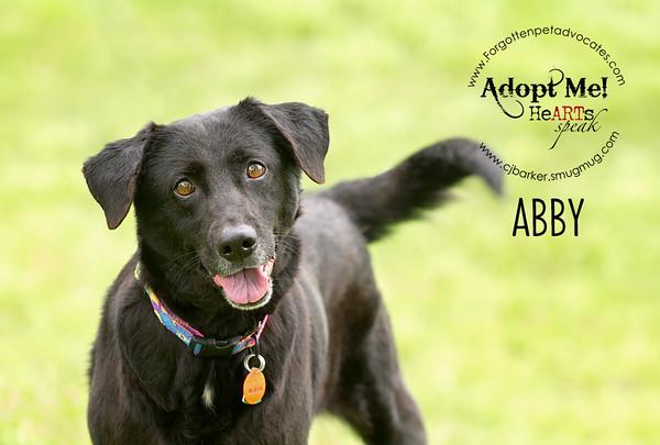 Forgotten Pet Advocates 2015