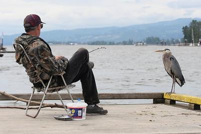 A man and his bird