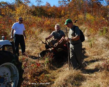 Fritz's Moose