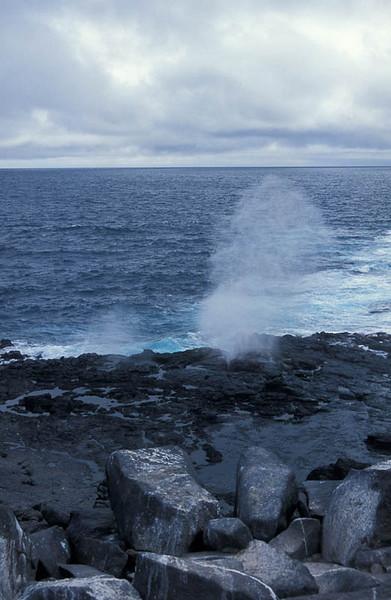 galapagos- blow hole- Punta Suarez, Espanola Galapagos, Ecuador