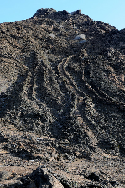 """The tracks in the muds are from volcanic rocks that slide down when the hills were still """"warm"""""""