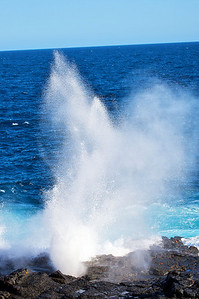 Blow Hole, Galapagos