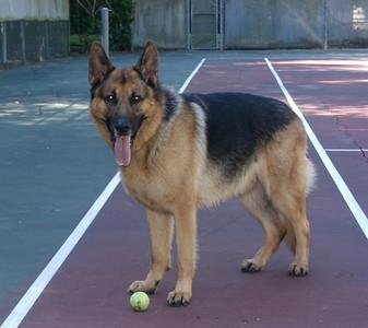 Ricki on the tennis court.