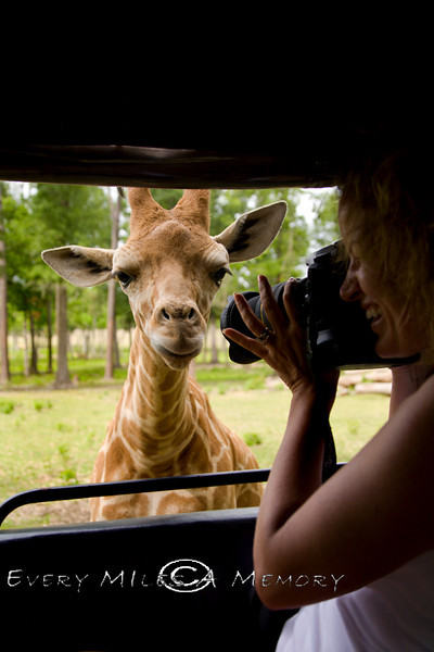 Thank Goodness for Macro Lenses - Global Wildlife Center, Louisiana