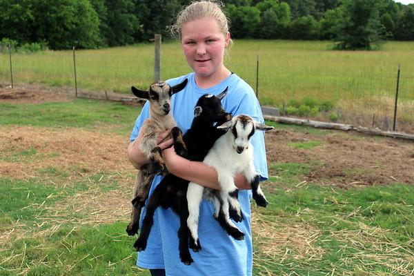 Goats May 30, 2017