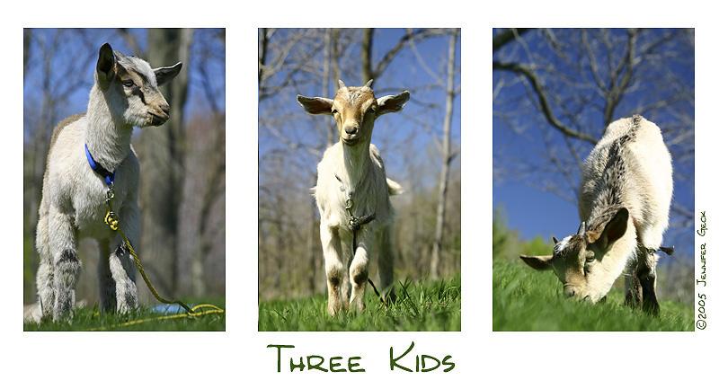 three kids2