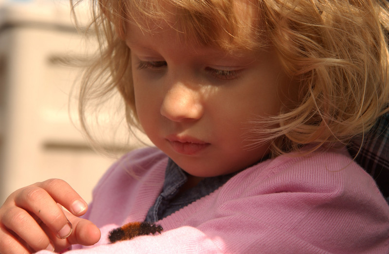Zara with woolly-bear caterpillar