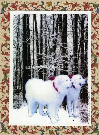 Christmas Card 2013 img155