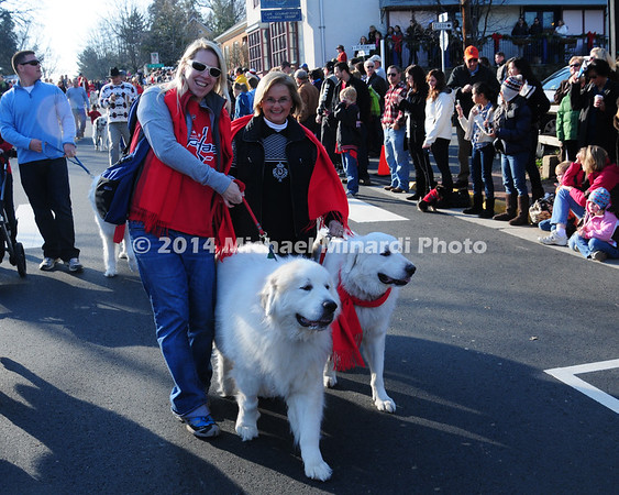 GREAT PYRENEES PARADE