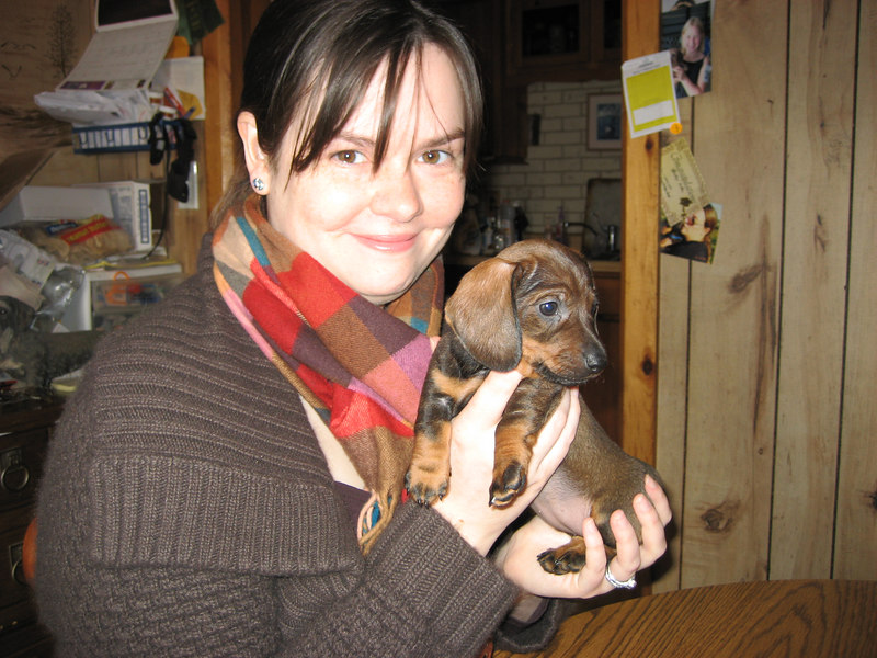 Our first visit to see Gretl at the breeder's house.  At this point, we thought she was going to be a wire hair, which is what we were looking for.