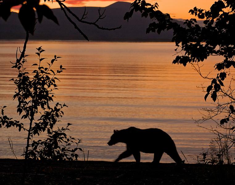 MGB-6188:Sunrise at Naknek Lake