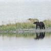 MGB-6516: Strolling along Naknek Lake