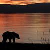 MGB-6190: Sunrise at Naknek Lake