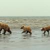 Running along the shore