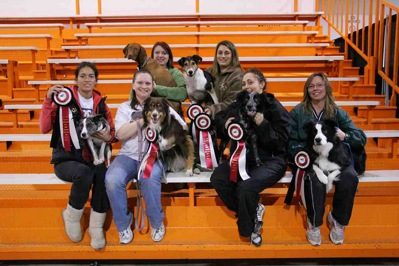 "Introducing the Fly Ball Team out of Toronto, Ontario. Groove is at the back row with Amy her owner, trainer and handler. <br /> Groover and Amy are now touring with Superdogs also.  <a href=""http://www.superdogs.com"">http://www.superdogs.com</a>"