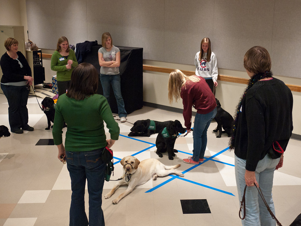 Yes - Tic Tac Toe with puppies!