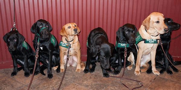 Group photo Christmas 2010