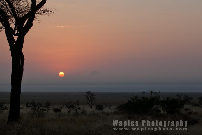Sunrise, Tarangire National Park
