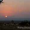 Sunrise, Tarangire National Park
