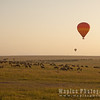 Sailing over Wildebeest