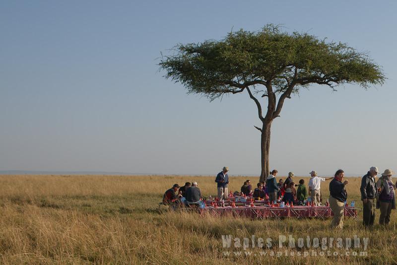 Champagne Breakfast on  the Maasai Mara