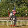 Stallions_George Bekris-11