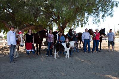 holiday horses-25