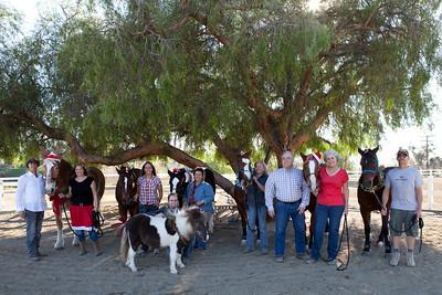 holiday horses-17