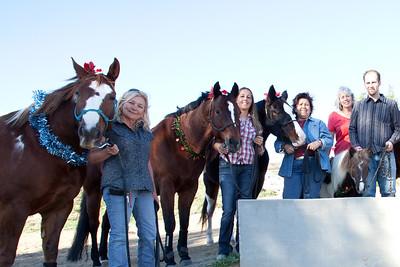 holiday horses-26