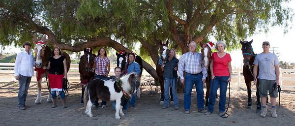 holiday horses-20