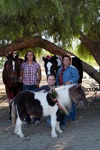 holiday horses-22