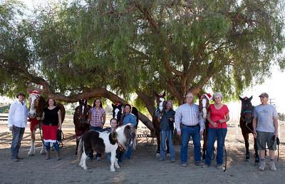 holiday horses-19