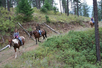As you can see my horse likes lots of room between him and the horse in front.
