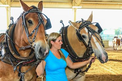 Horse Pull 2015 SL CO Fair