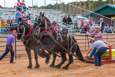 Horse Pull Cedar City 2016