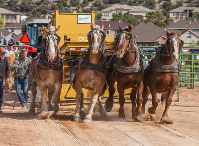 Horse Pull in Cedar City, UT October 27, 2012