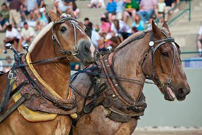 Horse Pull in Draper, Utah - July 18, 2009