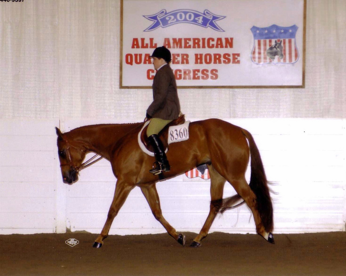 2004 Quarter Horse Congress-Novice Amateur Hunter Under Saddle<br /> Diversified Frost.