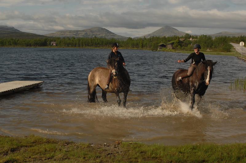 Hester vannet