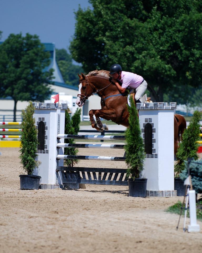 horse show saturnia 078050